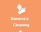 Cleaner Bermondsey