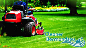 grass-cutting-bermondsey
