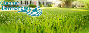 grass-cutting-services-bermondsey