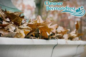 gutter-cleaners-bermondsey